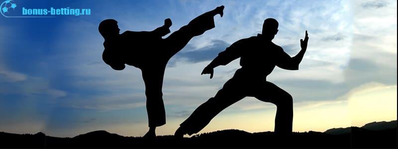 виды популярных боевых искусств