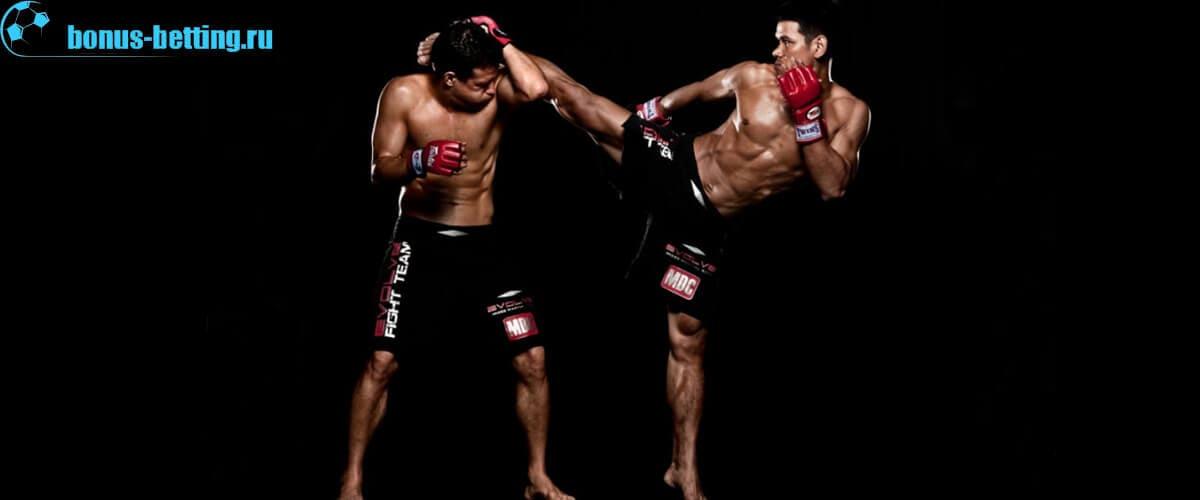 тайский бокс, свободный бой