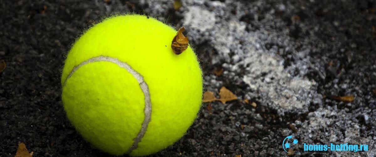Виды теннисных кортов