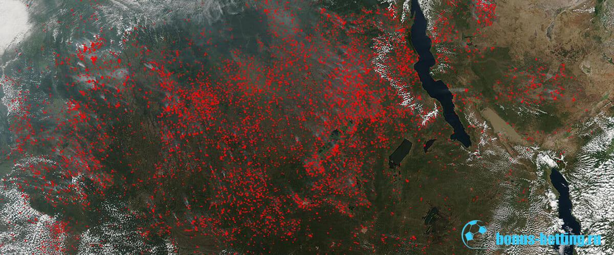 лесные пожары в Сибири со спутника