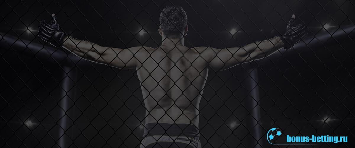 Чемпионы UFC