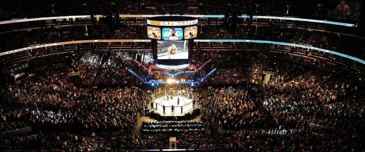 Рейтинг UFC 2021 легчайший вес мужчины